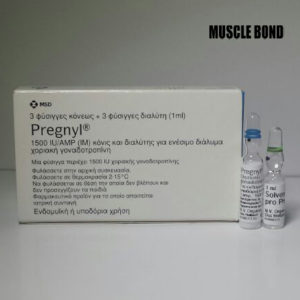OrganonPregnyl